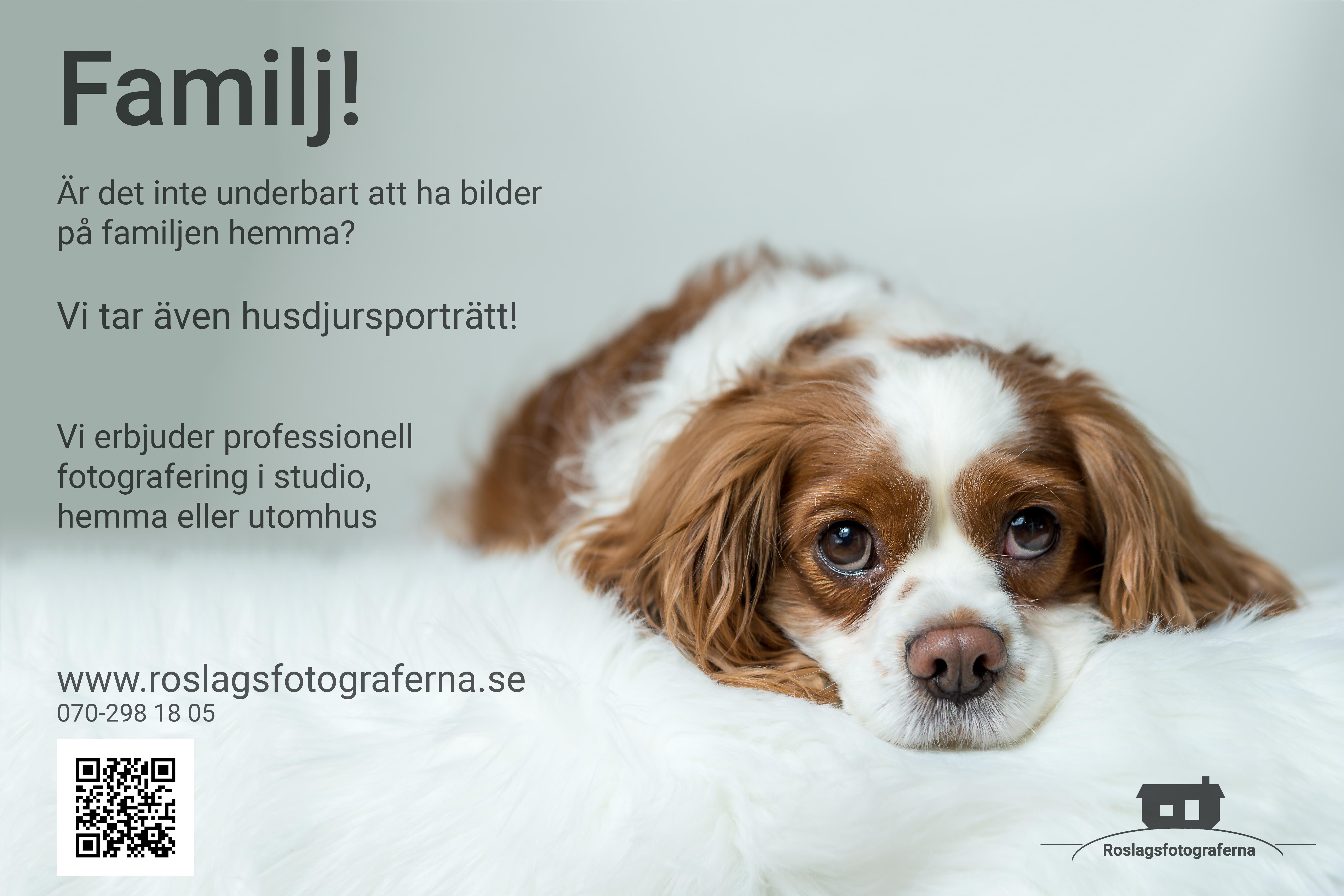 Familjebild - Husdjursporträtt