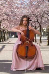 Körsbärsblom och cello