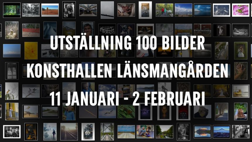 Utställningen 100-bilder 2020